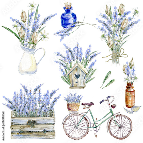 Fototapeta Set of hand drawn watercolor clipart. Provence atmosphere, laven