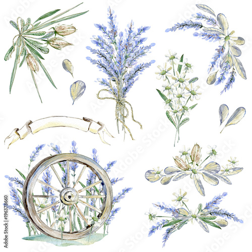 Dekoracja na wymiar set-of-hand-drawn-watercolor-clipart-provence-atmosphere-laven