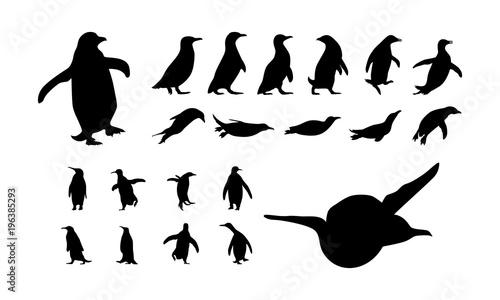 Fototapeta premium zestaw różnych ilustracji wektorowych sylwetka pingwina