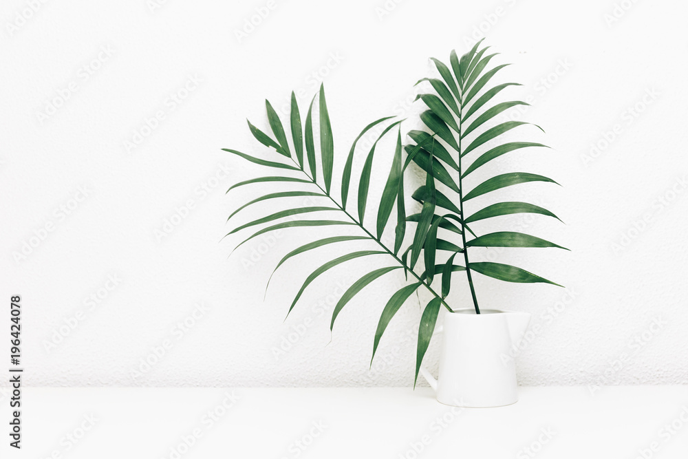 Fototapety, obrazy: Minimal empty space, stylish hipster background with green tropical leaves in jar