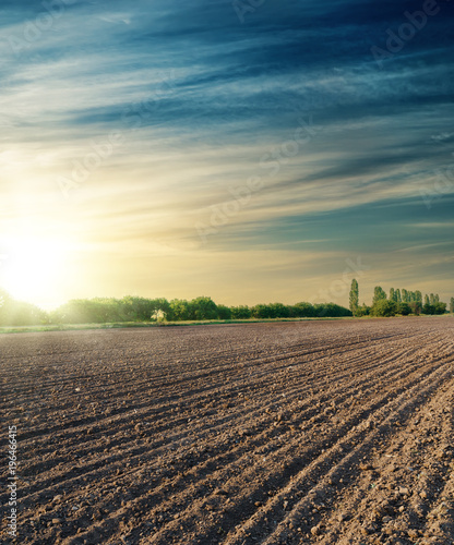 Photo  black agriculture field in sunset