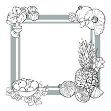Gray Squared Frame With Fruits In Line Art Hand Drawn Style, Pineapple, Tangerine, Garnet Or Pomegranate, Grape, Vector Illustration Isolated On White Background