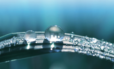 Beautiful large transparent drop of water dew on grass close up. Natural background.