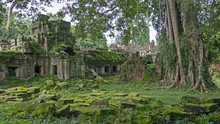 Mossy Stones Of Ancient Ruins ...