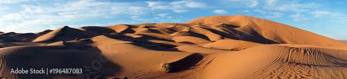 Poster de jardin Desert de sable Panorama on dunes