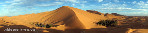 Photo sur Aluminium Desert de sable Two oasises