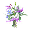 Bouquet of forest flowers with pink ribbon bow. Snowdrops, Trout lily and Liverwort. Vector illustration, realistic style, white background.