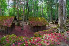 Winter At Political And Military School At Phu Hin Rong Kla National Park, Thailand