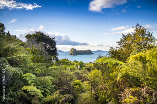 Deurstickers Cathedral Cove Overlooking the Pacific Ocean as the sun sets spectacularly over Cathedral Cove on the Coromandel Peninsula on the North Island of New Zealand near Auckland.