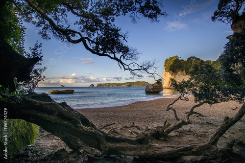Foto op Canvas Cathedral Cove Overlooking the Pacific Ocean as the sun sets spectacularly over Cathedral Cove on the Coromandel Peninsula on the North Island of New Zealand near Auckland.