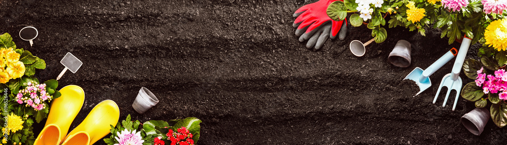 Fototapety, obrazy: Gardening Tools on Soil Background. Spring Garden Works Concept