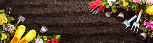 Fotografía Gardening Tools on Soil Background. Spring Garden Works Concept