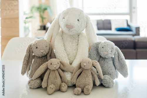 lop eared plush bunnies