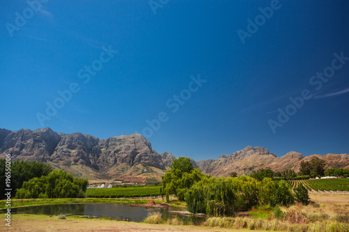 Tuinposter Blauwe jeans Beautiful Landscape in Stellenbosch, South Africa, with red Mountains, and Rows of Wine in Vineyards on a sunny Day with blue Sky