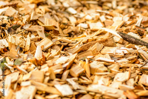 Fotografia, Obraz woodchips background texture