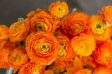 Bouquet of orange ranunculus