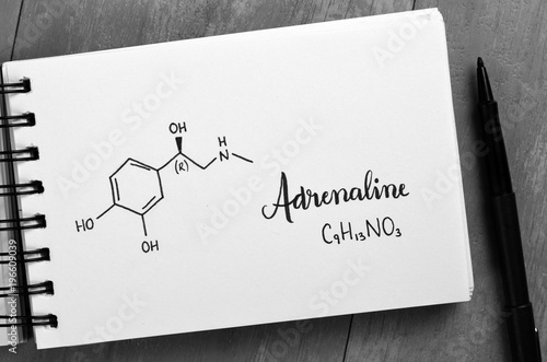 ADRENALINE Chemical Formula and Structure in Notebook Wallpaper Mural