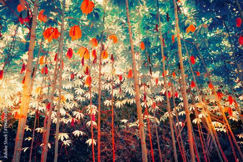 Surrealistyczne kolory roślin tropikalnych fantasy