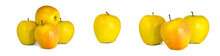 Assorted Yellow Apples Golden Delicious Isolate White Background. Procurement Under Inscription And Illustration