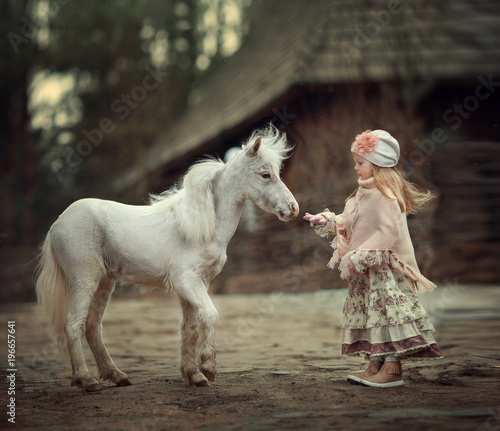 Fototapeta a little girl with a mini horse obraz