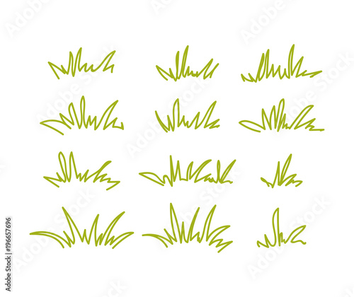Fototapeta Set of green grass tufts, clip art, transparent background