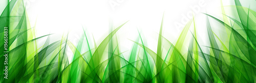 Delicate abstract grass leaves background. Suitable for nature concept, vacation, and summer holiday. #196658831