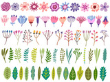 Fototapeta Kwiaty - Vector floral set. Flower, blossom, leaf, herb isolated