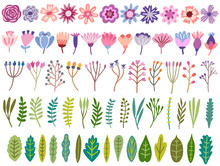 Vector Floral Set. Flower, Blo...