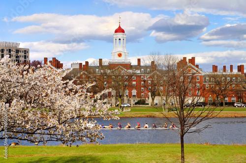Harvard University in Early Spring Poster Mural XXL