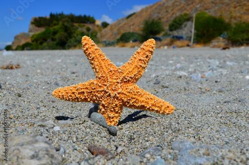 Fotografie, Obraz  Bova Marina - Reggio Calabria