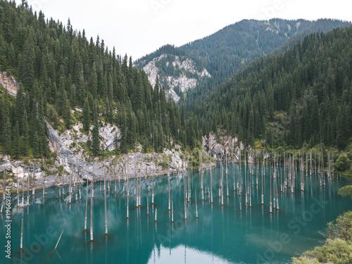 In de dag Khaki aerial shot of sunken forest in mountainous landscape