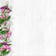 Border of beautiful spring flowers on a white wooden background