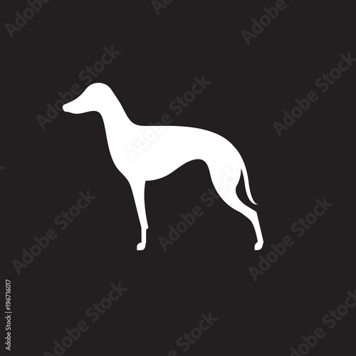 Silhouette of italian greyhound Canvas Print