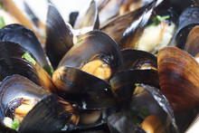 Black Mussels On Plate With Gr...