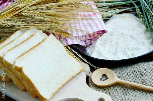 Fototapeta Green and Gold Wheat ears with wheat flour and White bread sliced obraz
