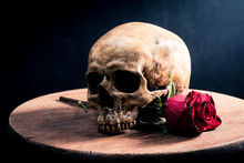 Human Skull And Red Roses Flower On Old Wooden Table With Dark Background