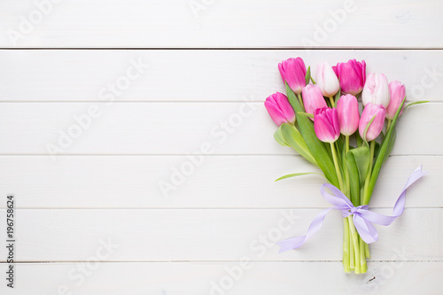Fotografie, Obraz  Pink tulip on the white background. Easter background