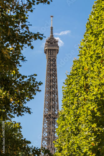 Papiers peints Artistique Eiffel Tower in green trees on blue sky