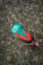 Lobster Buoy In Water