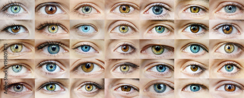 Eyes are many Canvas Print