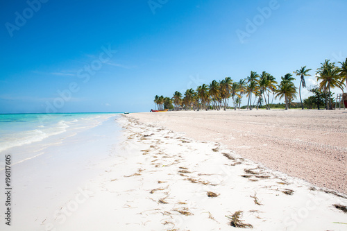 Tropical Beach with White Sand and Palm Trees, in Cap Cana, Dominican Republic