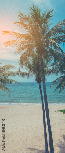 Foto-Schiebegardine Komplettsystem - image of coconut tree and sea