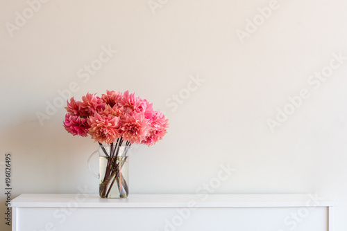Bright coral pink dahlias in glass jug on white sideboard against neutral wall background