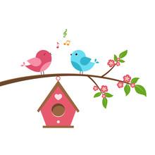 Singing Bird On Branch. Spring...