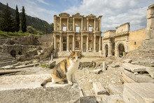 Turkey Ephesus Ancient City An...