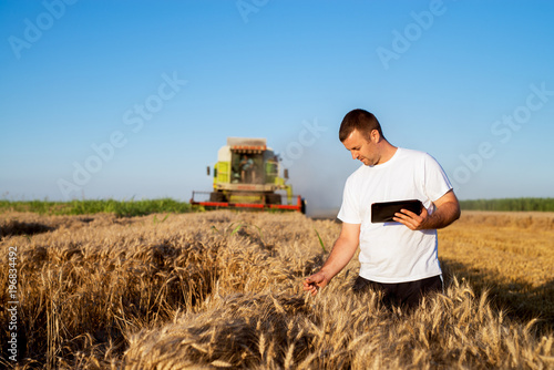 Fotografía  Young agronomist man standing in a golden wheat field with tablet and checking quality while combine harvester working behind