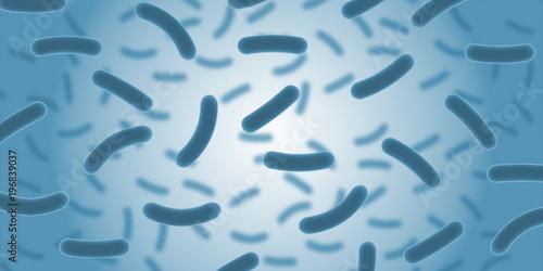 Photo Bakterien Illustration Medzin Wissenschaft