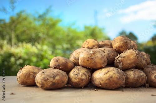 Close up of ripe raw potatoes.