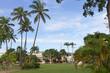 Savane park - Fort de France - Martinique FWI