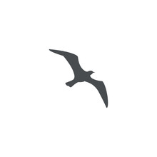 Gull Icon. Sign Design